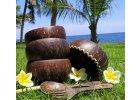 Misky z kokosu