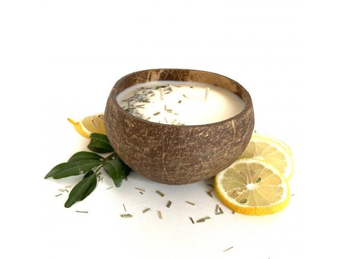 Svíčka v kokosu LEMONGRASS
