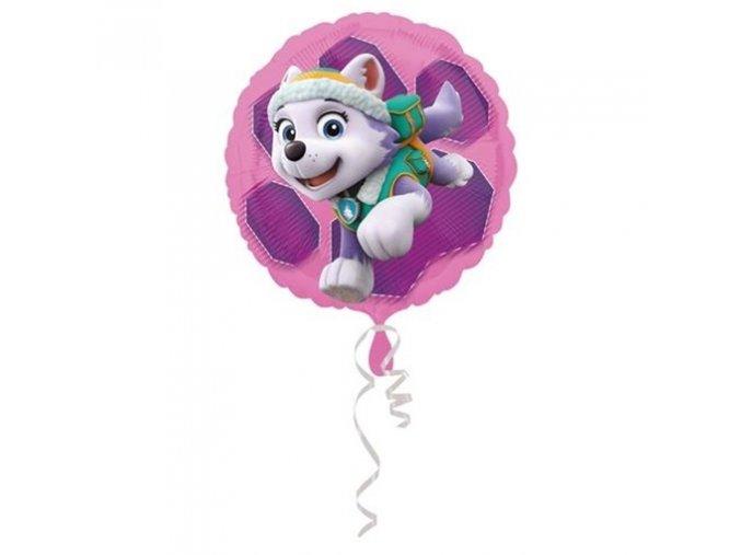 0012402 foliovy balonek tlapkova patrola skye a everest 43 cm 510