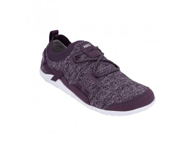 oswego violet 1
