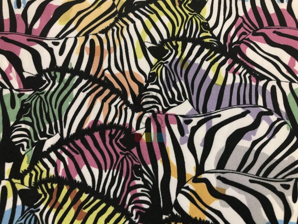 látka na koupací bermudy - barevné zebry