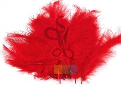 pštrosí peří 9 - 16 cm