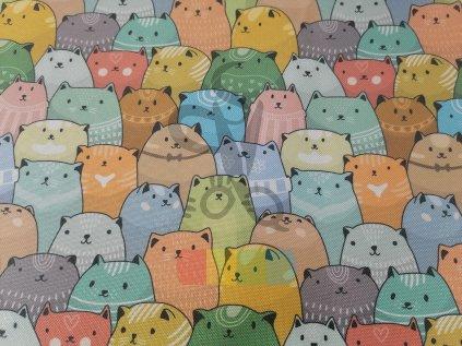 kočárkovina - barevné kočky