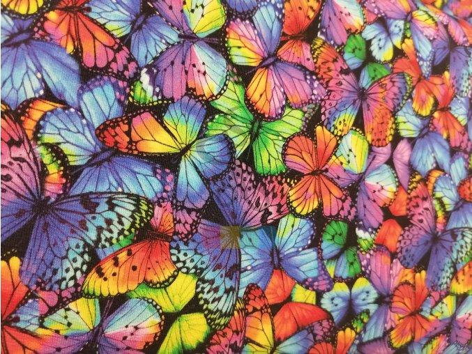 teplákovina - barevní motýlci
