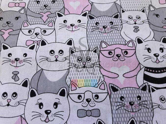 bavlněná látka - kočičky v růžové