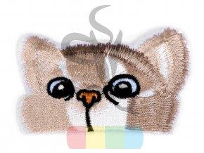 nažehlovačka - kočka