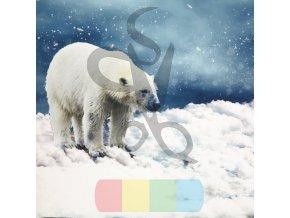 kočárkovina - panel - 35x35 - lední medvěd