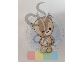 teplákovina - panel - 40 x 50  cm - medvědí kluk