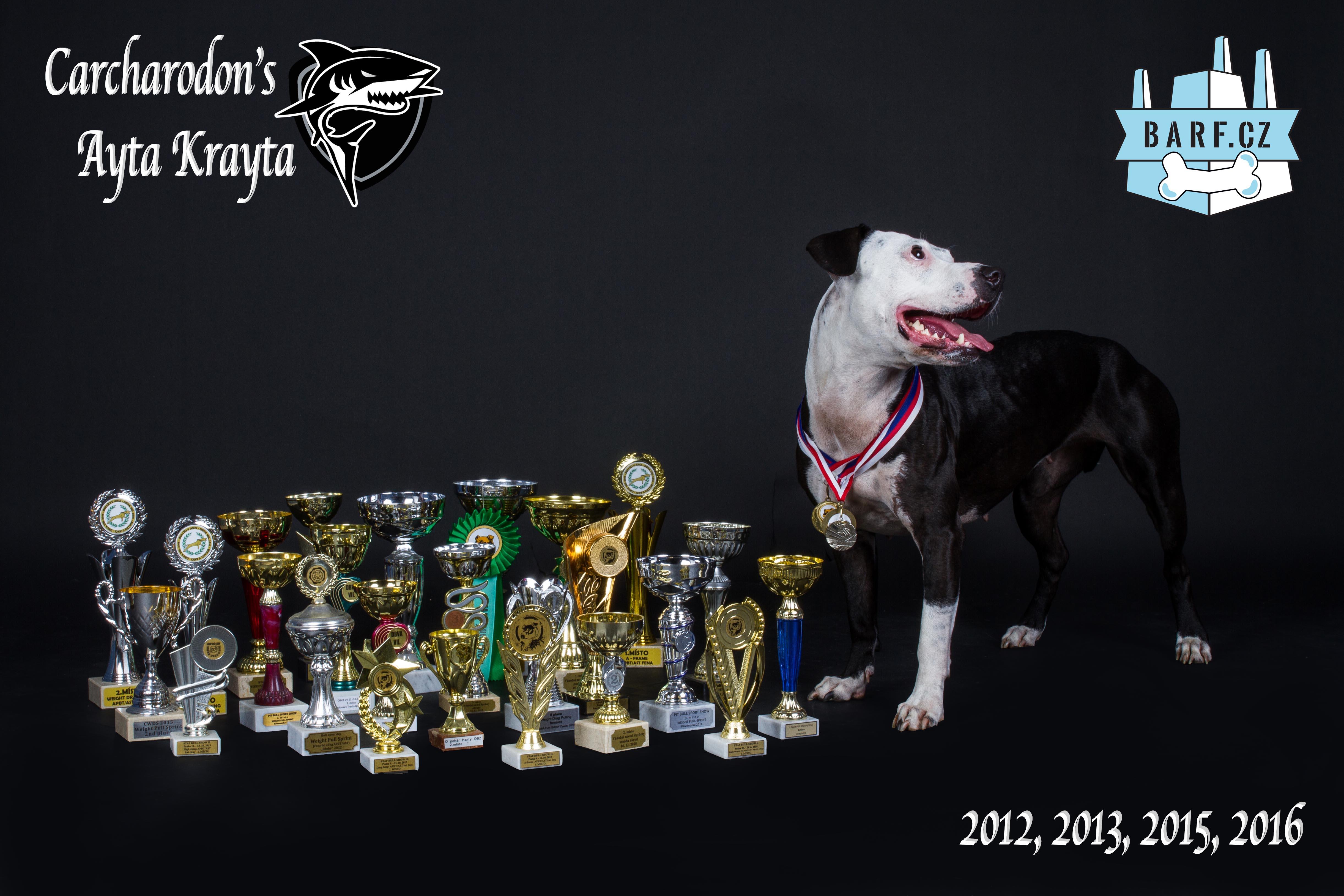 Krayta_BARF_oceneni