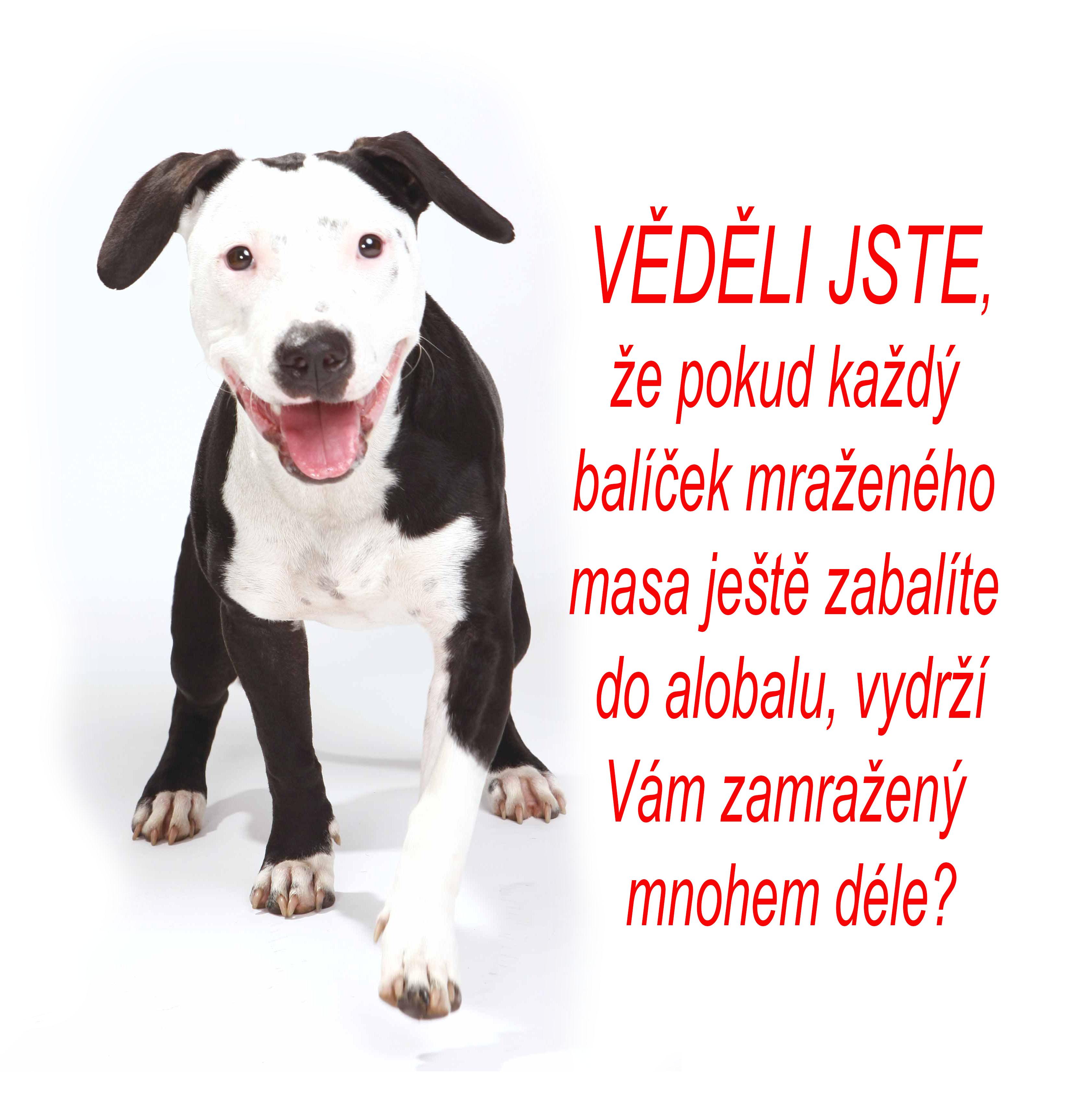 IMG_3136_vedeli_jste_ze_alobal_1