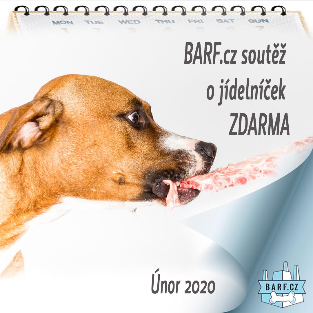 soutez_INST_jidelnicky_unor_2020