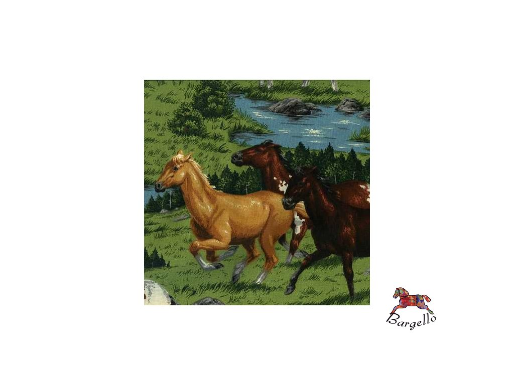 V.I.P. koně