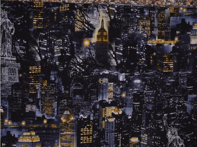 City Scapes NYC at Night