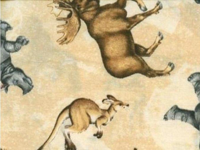 Čtverec Animals Around the World