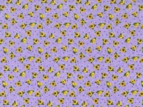 Serendipity Sunflowers