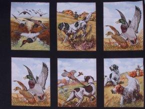 Bird Hunting