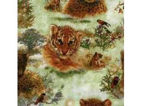 Čtverec Safari Cats