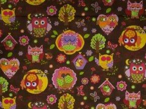 Čtverec Owls in the Wood