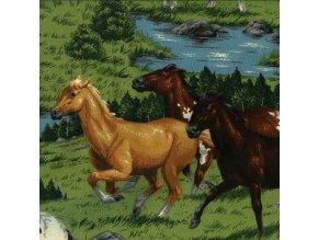 Čtverec V.I.P. koně