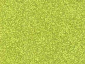 Čtverec Aster Lime