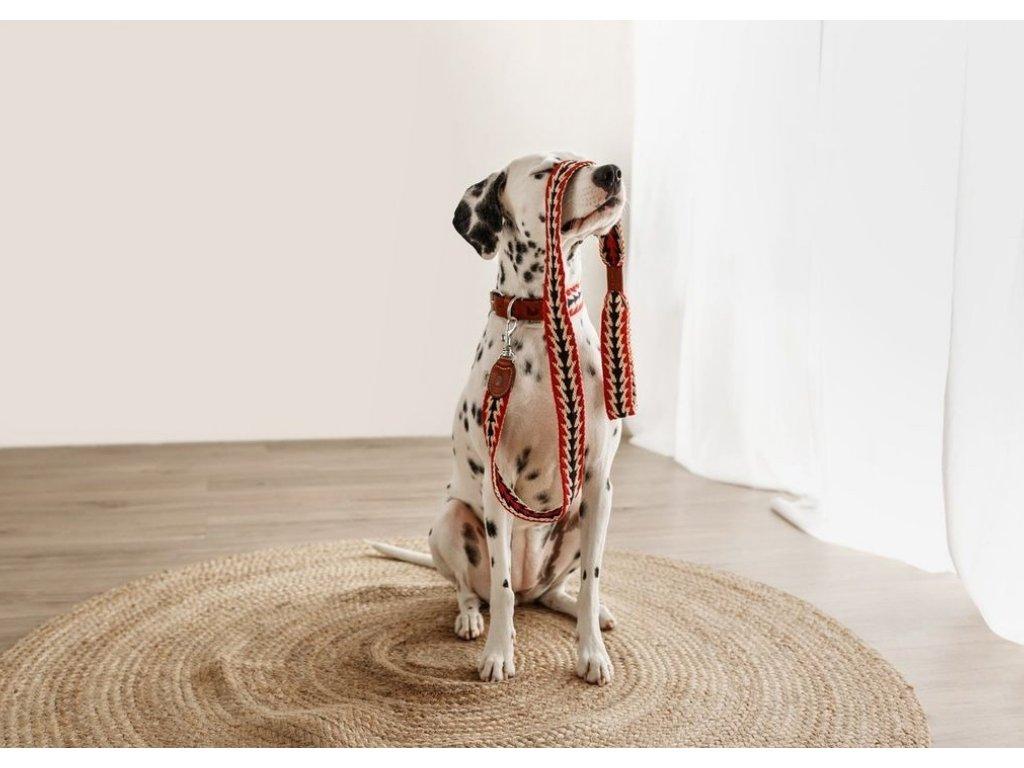 Set obojek a vodítko pro psa Buddys Peruvian Arrow červený