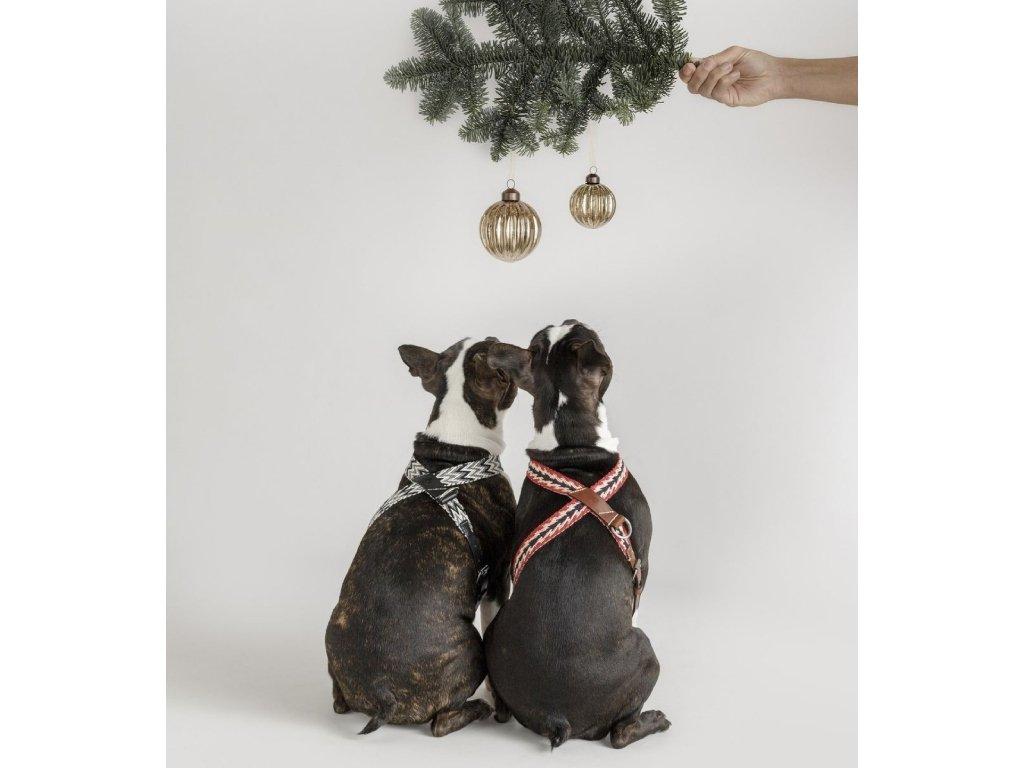 Postroj pro psa Buddys Peruvian Arrow červený