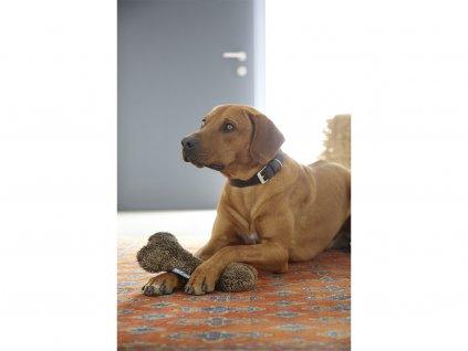 Kvalitní hračka pro psy MiaCara Sherpa kost