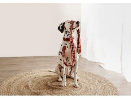 Obojek pro psy Buddys Peruvian Arrow červený