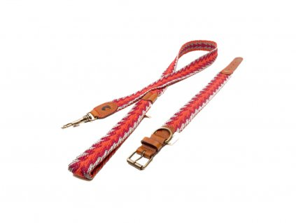 Set obojek a vodítko pro psa Buddys Peruvian Arrow oranžový