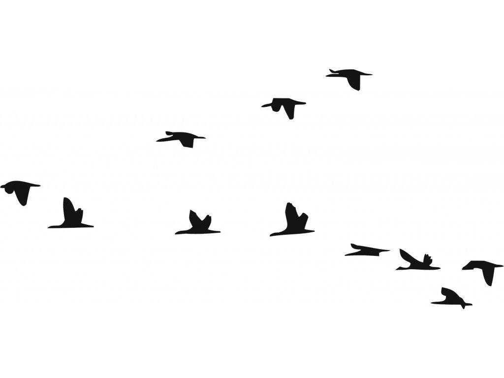 Letící ptáci - plastová šablona 267