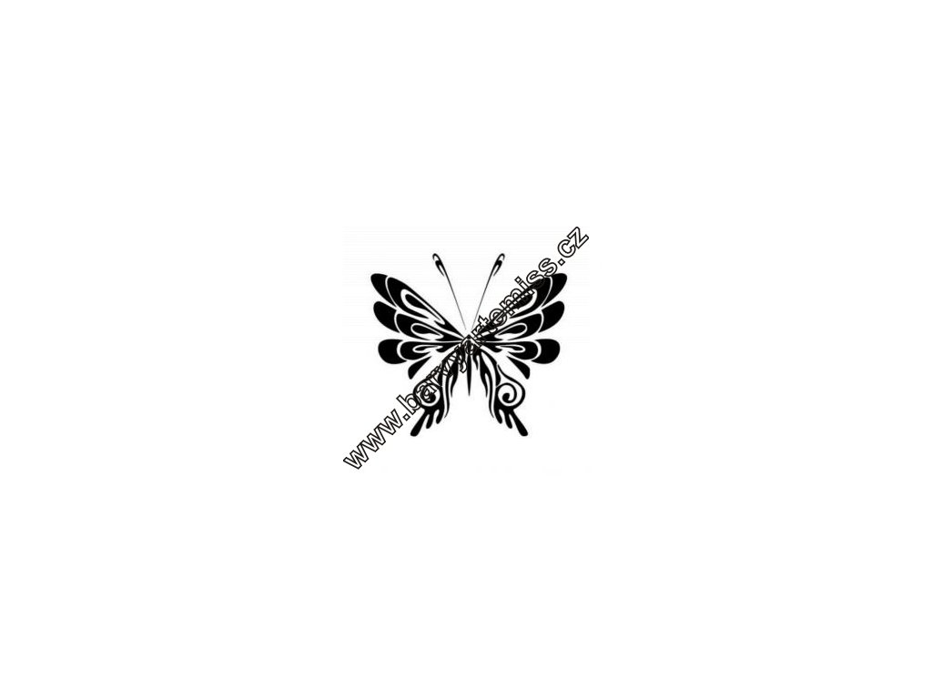 Motýl - plastová šablona 001