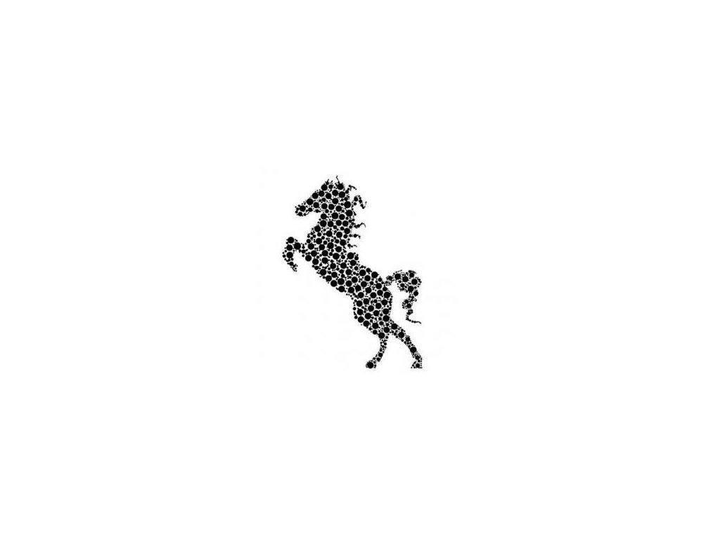 Kůň - plastová šablona 021