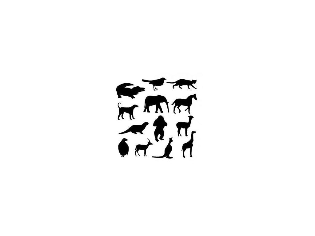 Zvířata mix  - plastová šablona 040