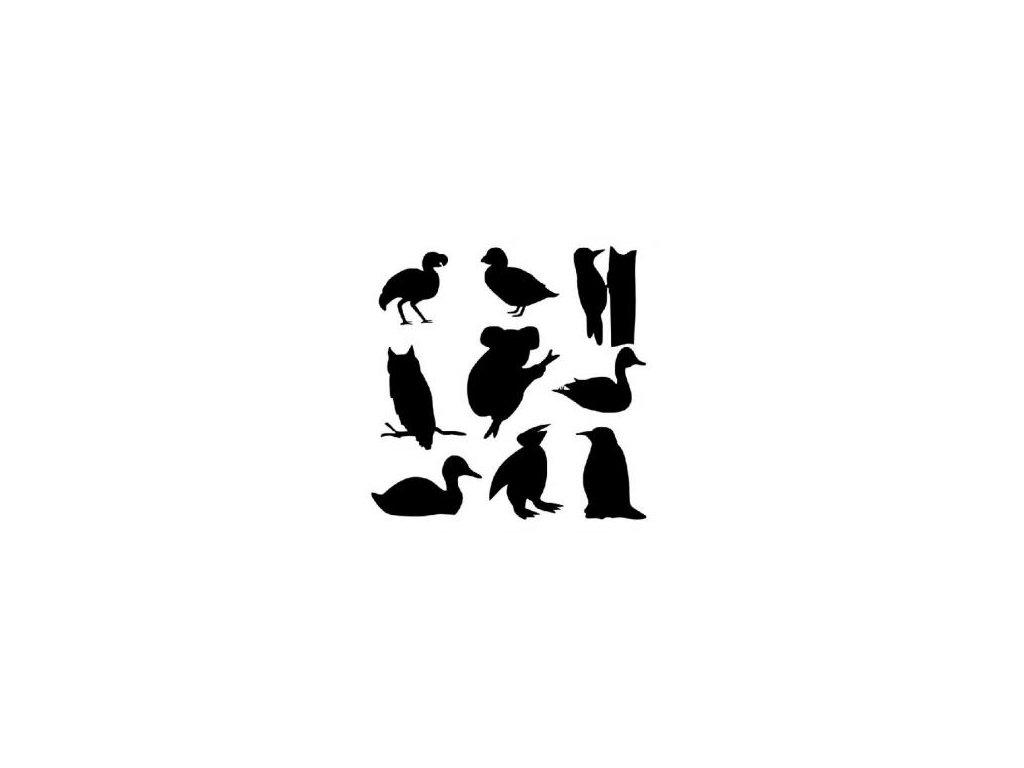 Zvířata - plastová šablona 048
