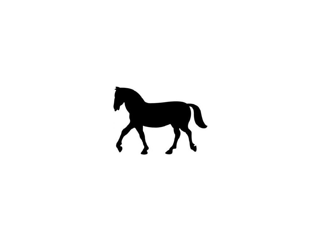 Kůň - plastová šablona 055