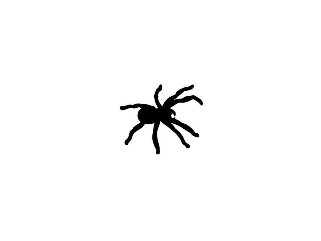 Pavouk - plastová šablona 085