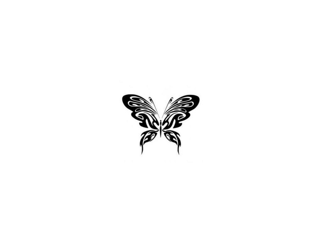 Motýl - plastová šablona 093