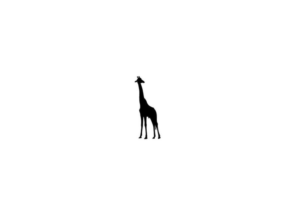 Žirafa - plastová šablona 100