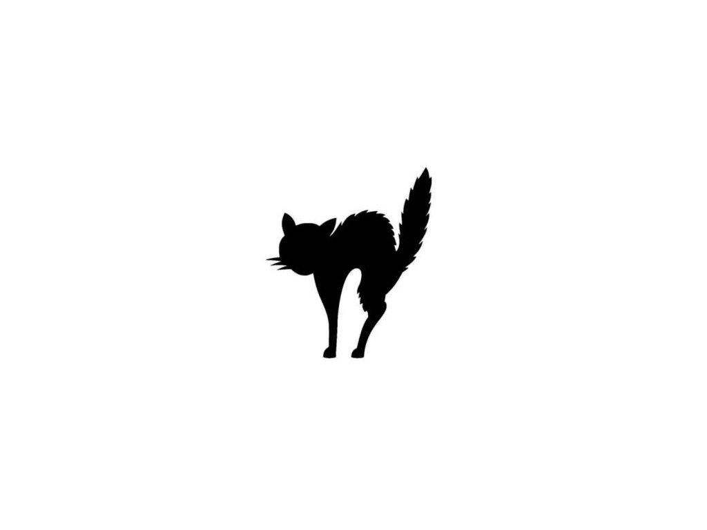 Naježená kočka - plastová šablona 101