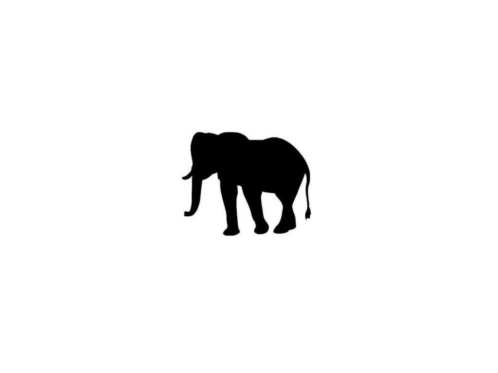 Slon - plastová šablona 107