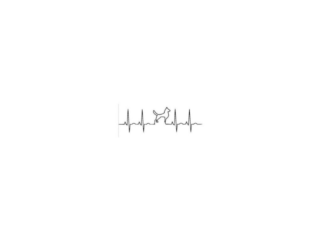 Pes EKG - plastová šablona 109