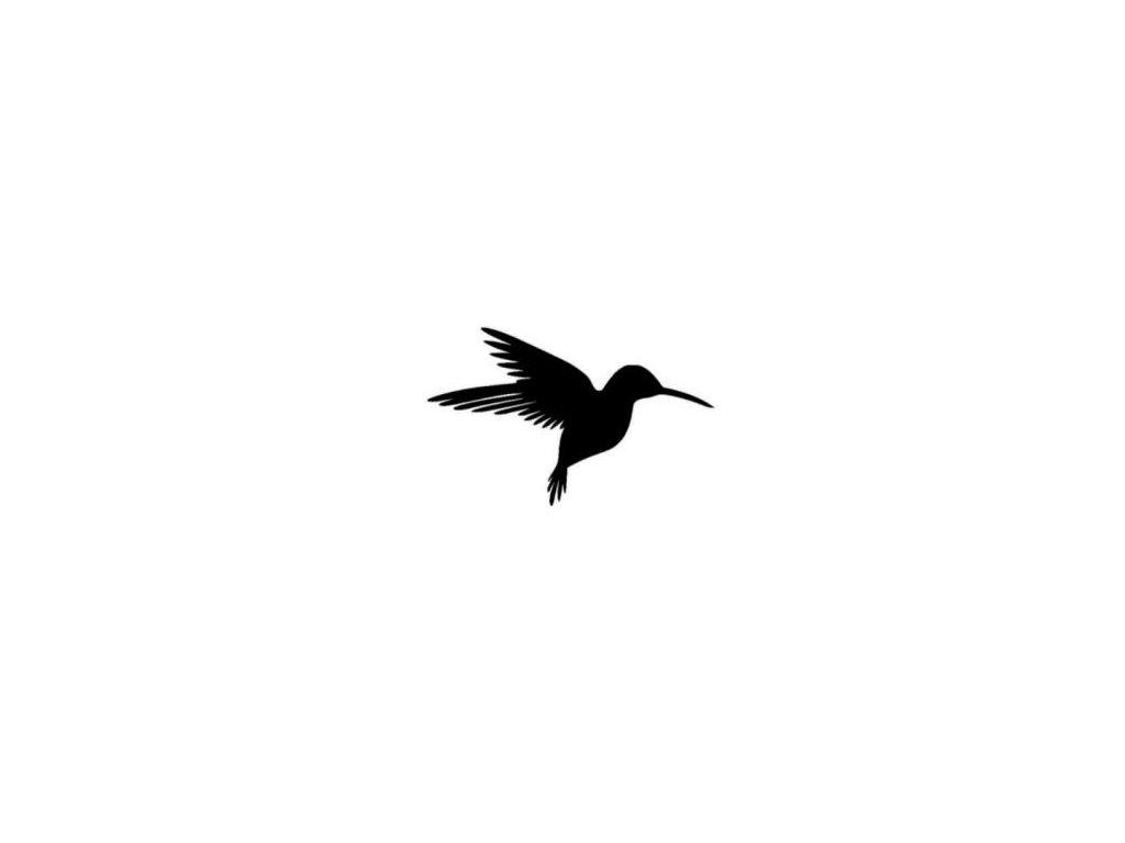 Kolibřík - plastová šablona 136