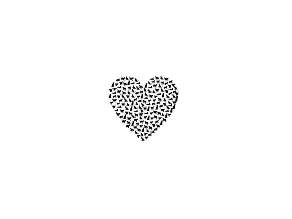 Kočičí srdce - plastová šablona 144