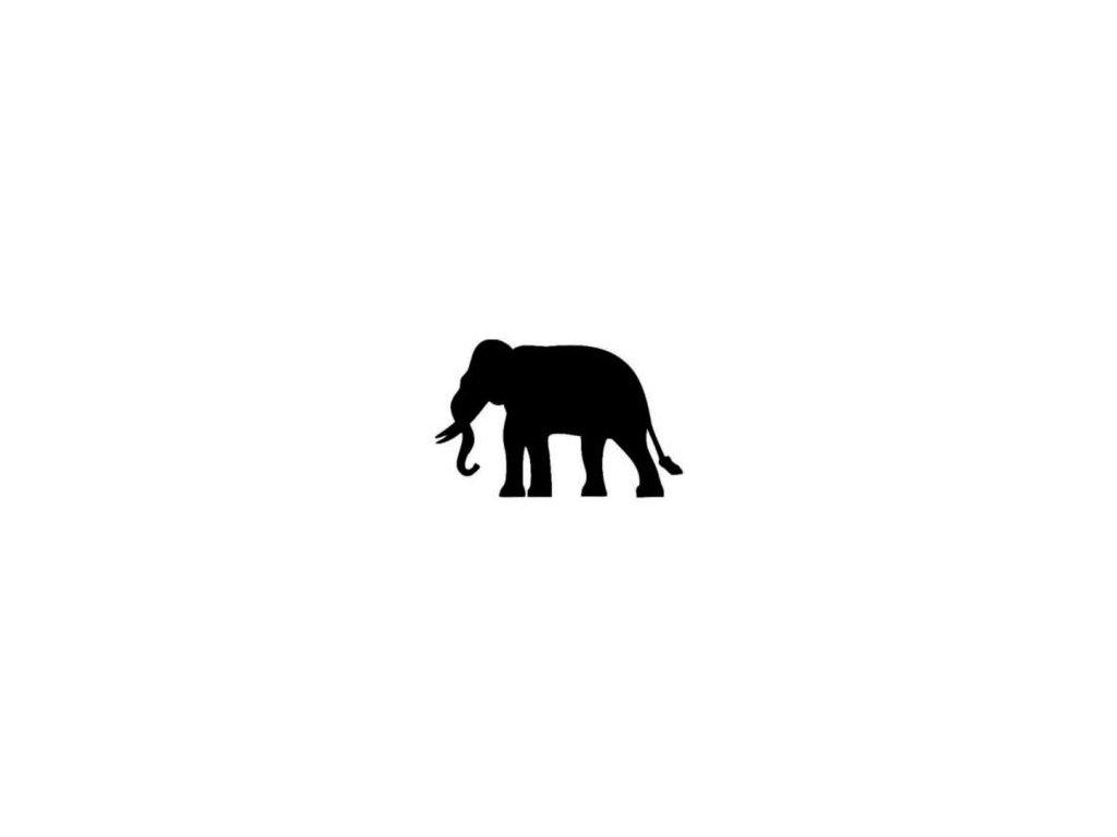 Slon - plastová šablona 150