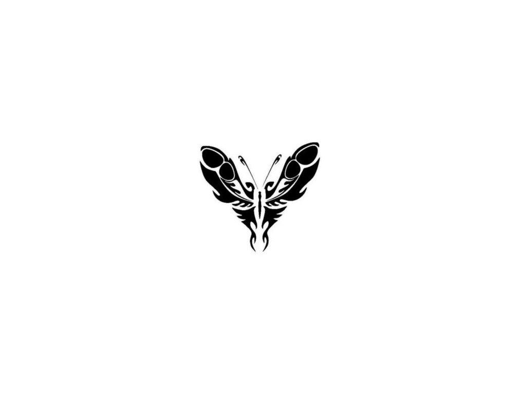 Motýl - plastová šablona 159