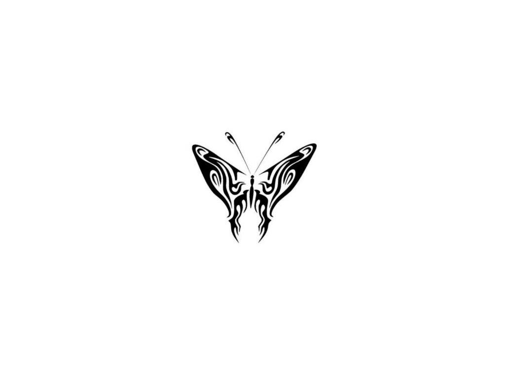 Motýl - plastová šablona 161