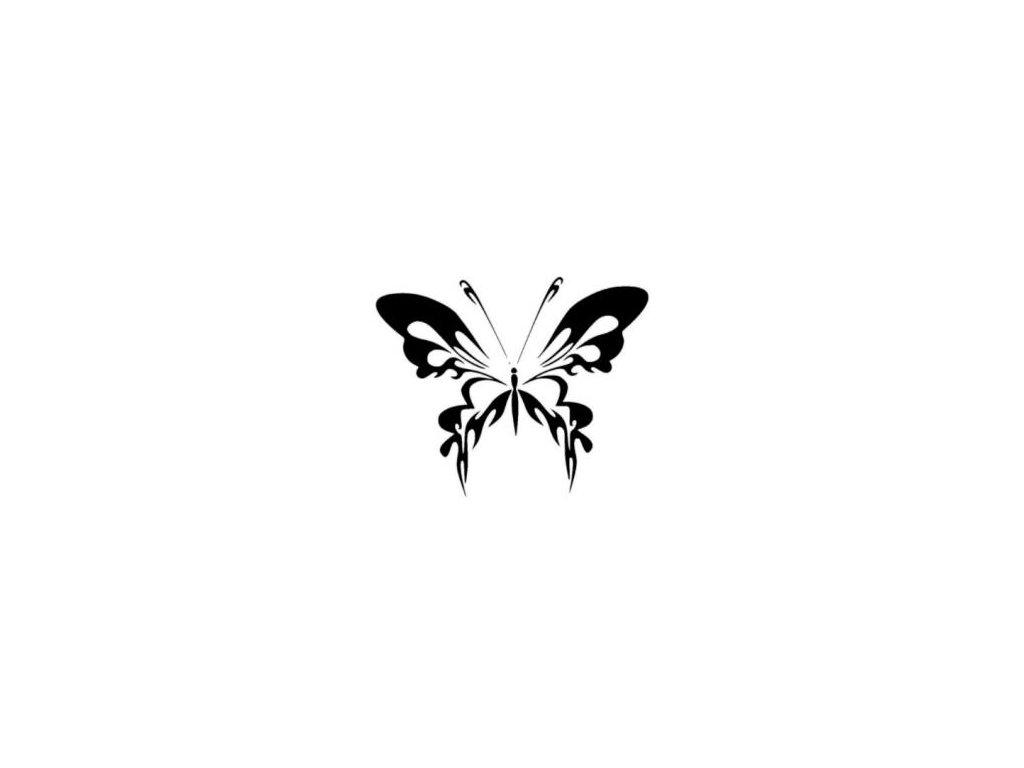 Motýl - plastová šablona 162