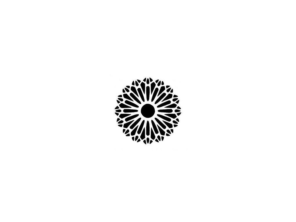 Mandala - plastová šablona 224