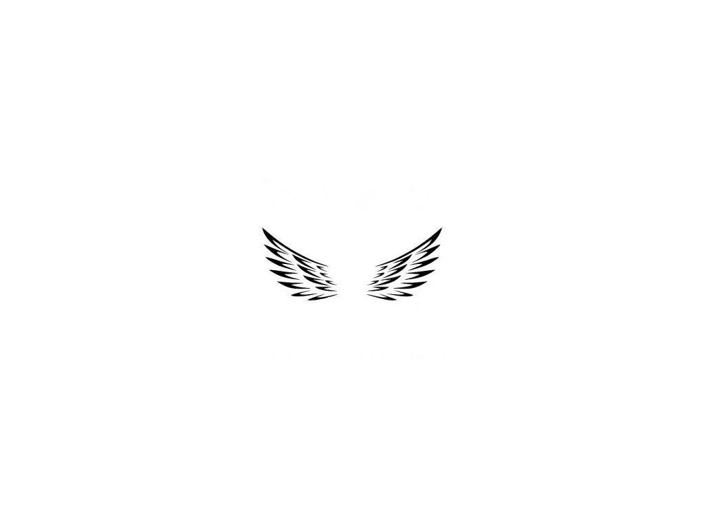 Andělská křídla - plastová šablona 257