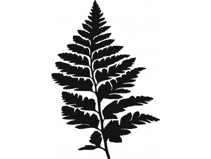 Kapradina list - plastová šablona 287